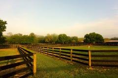 Uma exploração agrícola arrumada do cavalo no ocala Imagens de Stock Royalty Free