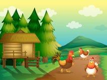 Uma exploração agrícola com galinhas e uma casa nativa Imagem de Stock