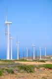 Uma exploração agrícola de vento Foto de Stock Royalty Free