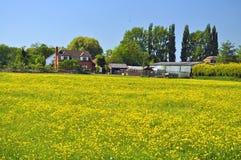 Uma exploração agrícola em um prado imagens de stock