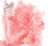 Uma explosão colorida do pó Fotos de Stock