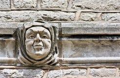 Uma face na parede Imagens de Stock