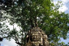 Uma face no templo do som de Ta, cambodia Imagem de Stock