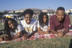 Uma família do African-American que picnicing Imagem de Stock
