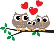 Uma família doce da coruja pequena Imagem de Stock