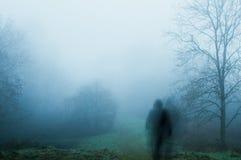 Uma figura assustador, borrada, espectral, encapuçado em estar em um trajeto em um dia de invernos nevoento Com abafado edite imagem de stock