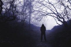 Uma figura encapuçado assustador posição em uma floresta nevoenta no inverno, com um azul duro para editar fotografia de stock