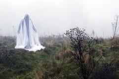 Uma figura espectral assustador posição no campo em um dia de invernos nevoento foto de stock