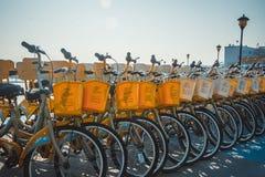Uma fileira das bicicletas fotografia de stock