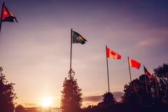 Uma fileira de bandeiras do voo das nações no fundo do céu do por do sol Bandeiras de países diferentes União das nações Fotografia de Stock Royalty Free