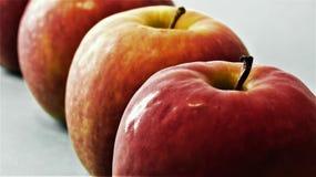 Uma fileira de maçãs agradáveis Fotografia de Stock