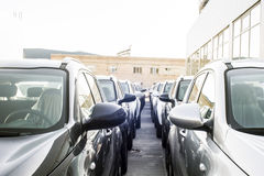 Uma fileira dos carros novos estacionados em uma loja do concessionário automóvel Fotos de Stock Royalty Free
