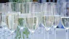 Uma fileira dos vidros enchidos com o champanhe está pronta alinhado para ser servido filme