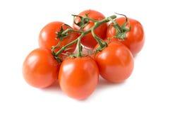 Uma filial de tomates vermelhos frescos Fotografia de Stock