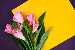 uma flor cor-de-rosa coloca no papel do yelow no fundo branco estilo liso da configuração Espaço para o texto fotografia de stock royalty free
