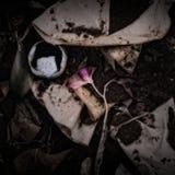 Uma flor e filtros de café em um montão do adubo Fotos de Stock Royalty Free