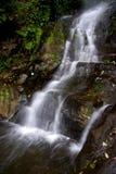 Uma floresta úmida tropical agradável com uma cachoeira agradável fotos de stock royalty free