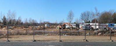 Uma floresta do canteiro de obras novas na primavera Imagem de Stock