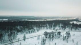 Uma floresta do inverno uma vista geral da elevação video estoque