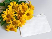 Uma folha de papel e flores amarelas Imagens de Stock Royalty Free