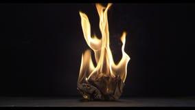 Uma folha de papel queima-se em uma placa transparente, um fogo video estoque