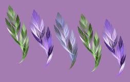 Uma folha e uma pena do fractal ilustração do vetor