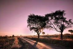 Uma foto bonita do tempo do nascer do sol foto de stock royalty free