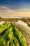 Cena tranquilo da praia com rochas verdes fotografia de stock royalty free