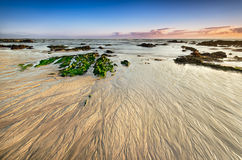 Cena da praia na maré baixa, areia fotografia de stock royalty free
