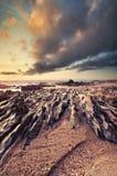 Por do sol impressionante na praia, cores bonitas imagens de stock