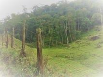 Uma foto de uma cerca em uma exploração agrícola na área rural fotografia de stock