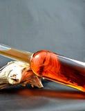 Garrafa do licor Imagem de Stock Royalty Free