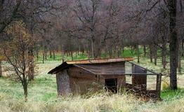 Uma gaiola de galinha velha Fotografia de Stock Royalty Free