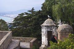 Uma gaivota senta-se na abóbada de uma construção velha na fortaleza Gibralfaro, Malaga, Espanha Um par de amor olha um pássaro imagens de stock