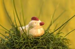 Uma galinha relaxed fotos de stock