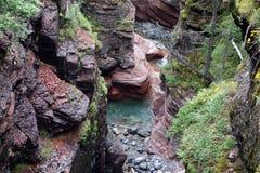 Uma garganta incrível no parque do waterton, Alberta Imagens de Stock Royalty Free