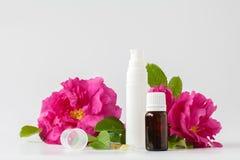 Uma garrafa do óleo cor-de-rosa selvagem natural e da flor cor-de-rosa fresca - aromat Fotografia de Stock