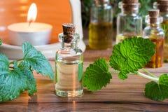 Uma garrafa do óleo essencial do melissa com melissa fresco sae fotografia de stock