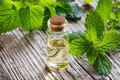 Uma garrafa do óleo essencial do melissa com melissa fresco sae fotos de stock royalty free