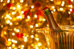 Uma garrafa do champanhe em uma cubeta de gelo de vidro na frente de uma árvore de Natal fotos de stock royalty free