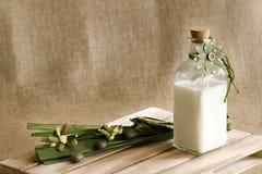Uma garrafa do leite fresco e de alguma decoração floral fotos de stock
