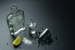 Uma garrafa do tequila de prata Foto de Stock Royalty Free