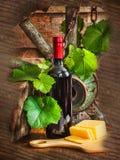 Uma garrafa do vinho no fundo da videira Fotografia de Stock Royalty Free