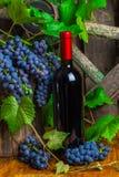 Uma garrafa do vinho tinto no fundo das uvas Foto de Stock Royalty Free