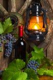 Uma garrafa do vinho tinto no fundo das uvas Imagens de Stock