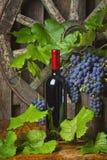 Uma garrafa do vinho tinto no fundo das uvas Fotos de Stock Royalty Free
