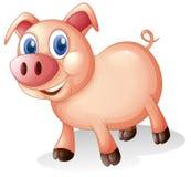 Uma gordura e um porco de sorriso ilustração stock