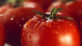 Uma gota da água cai em um tomate maduro vídeos de arquivo