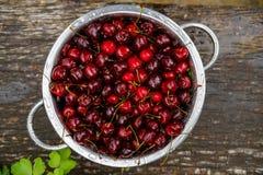Uma grande placa de cerejas frescas Uma colheita nova das cerejas com água deixa cair Foto no jardim Imagens de Stock