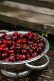 Uma grande placa de cerejas frescas Uma colheita nova das cerejas com água deixa cair Foto no jardim Imagens de Stock Royalty Free